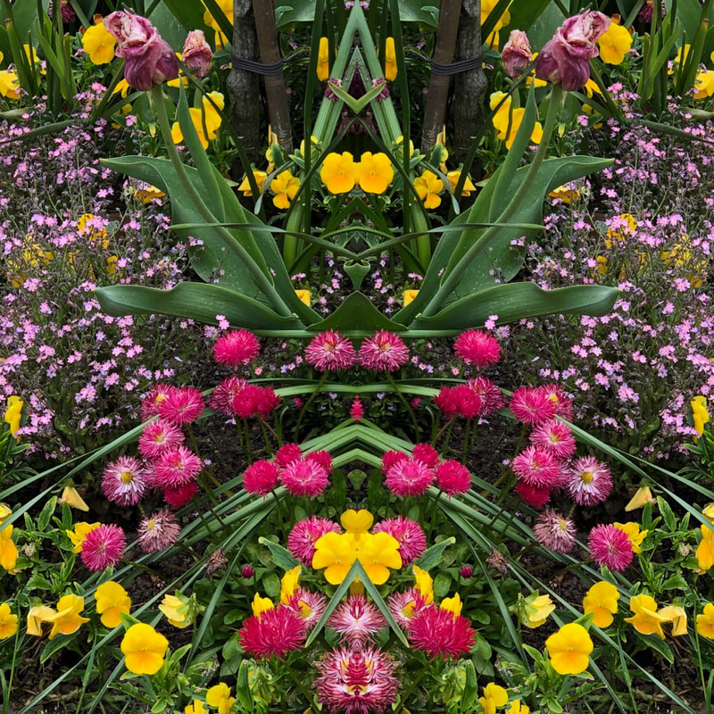 An edited photo depicts yellow, hot pink and purple flowers in a vertically symmetrical image.